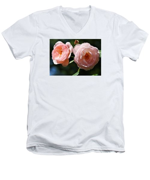 Softly Pink Men's V-Neck T-Shirt by Al Fritz
