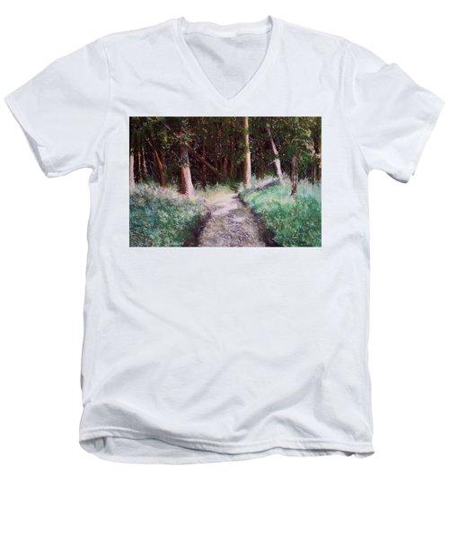 Solveigs Journey Men's V-Neck T-Shirt