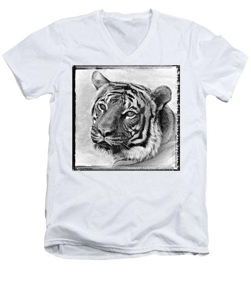 Sometimes Less Is More Men's V-Neck T-Shirt