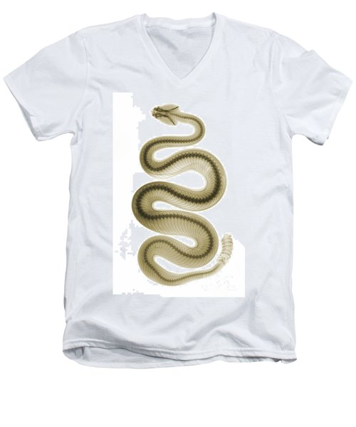 Southern Pacific Rattlesnake, X-ray Men's V-Neck T-Shirt by Ted Kinsman