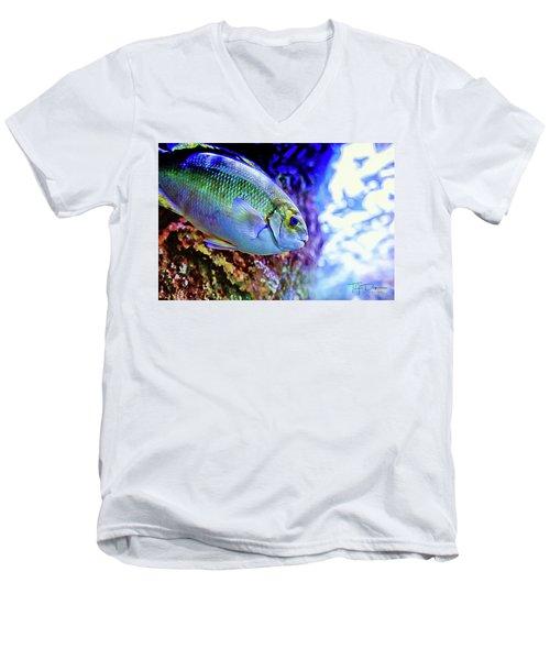 Splash Of Color Men's V-Neck T-Shirt