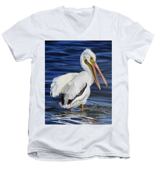 Splendor At Half Moon Island Men's V-Neck T-Shirt by Phyllis Beiser