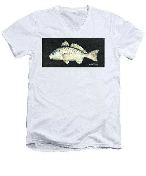Spot Men's V-Neck T-Shirt by Stan Tenney
