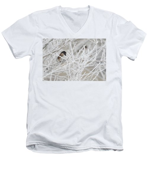Spotted Towhee In Winter Men's V-Neck T-Shirt