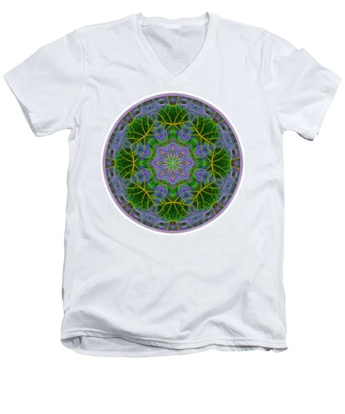 Spring Bloom Colors Mandala Men's V-Neck T-Shirt