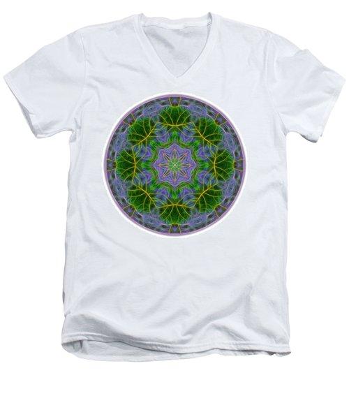 Spring Bloom Colors Mandala Men's V-Neck T-Shirt