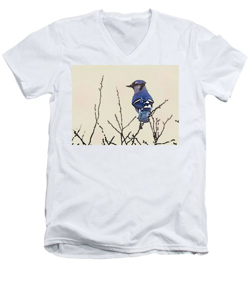 Spring Bluejay Men's V-Neck T-Shirt