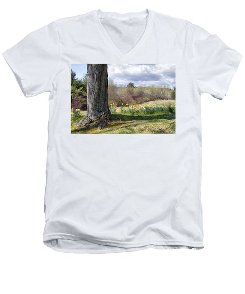 Spring Daffodils  Men's V-Neck T-Shirt by Betty Pauwels