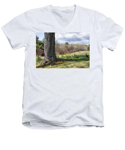 Spring Daffodils  Men's V-Neck T-Shirt