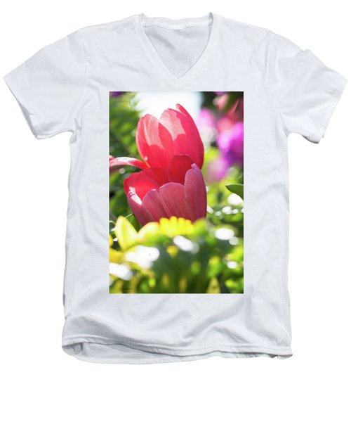 Spring Feeling Men's V-Neck T-Shirt