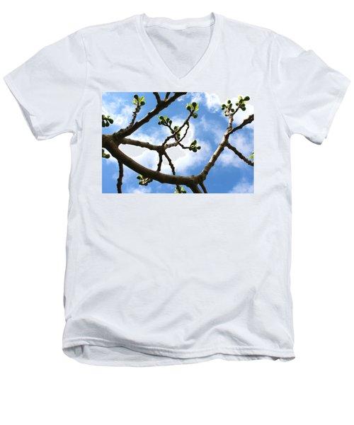 Fig Tree In Spring Men's V-Neck T-Shirt