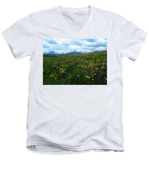 Spring Flowers On The Front Men's V-Neck T-Shirt