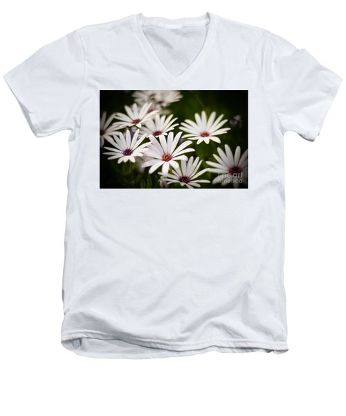 Spring Is In The Air Men's V-Neck T-Shirt by Kelly Wade
