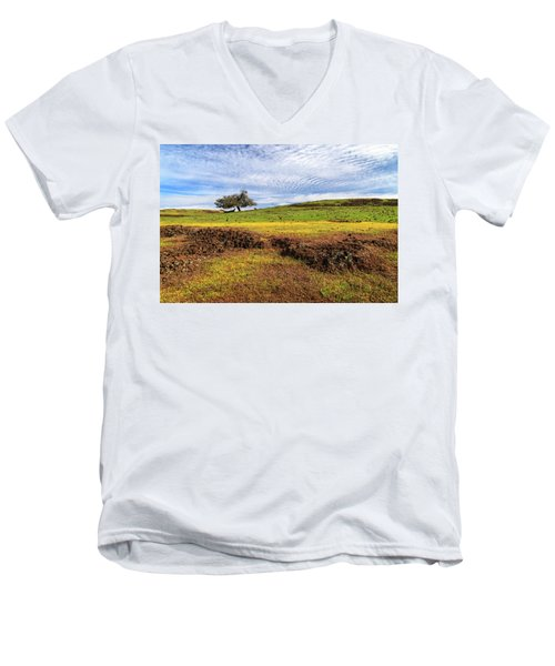 Men's V-Neck T-Shirt featuring the photograph Spring On North Table Mountain by James Eddy