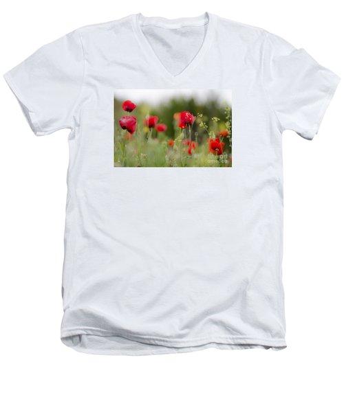 Spring Poppies  Men's V-Neck T-Shirt