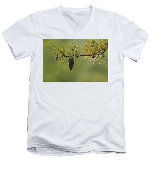 Spring Rain And Pinecone Men's V-Neck T-Shirt by Michael Eingle