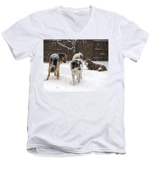 Spring Snow #2 Men's V-Neck T-Shirt