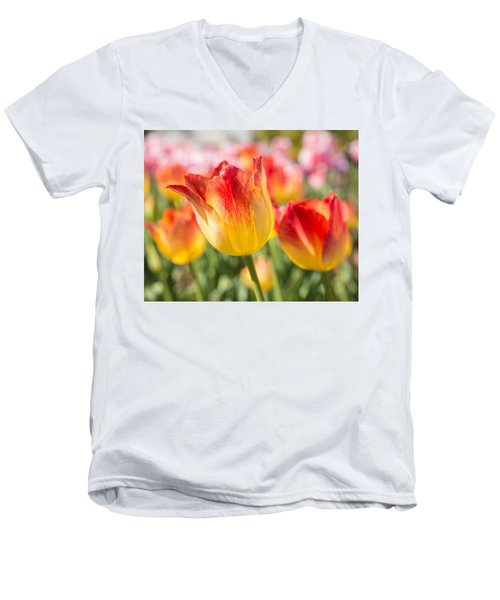 Spring Touches My Soul Men's V-Neck T-Shirt