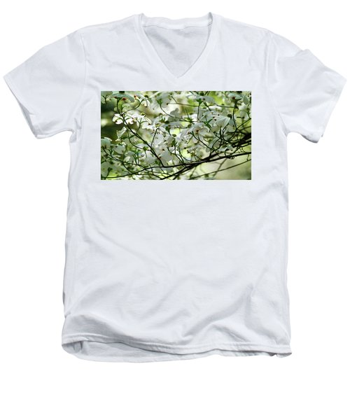 Springtime Men's V-Neck T-Shirt
