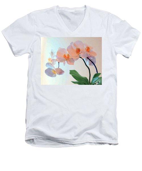 Springtime Delight 2 Men's V-Neck T-Shirt
