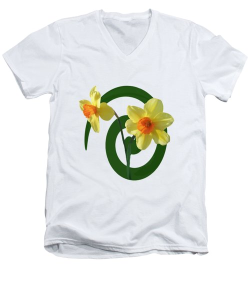 Springtime Tshirt Men's V-Neck T-Shirt