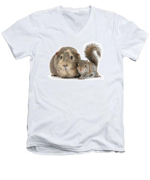 Squirrel And Guinea Men's V-Neck T-Shirt