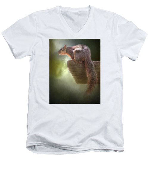 Squirrel Men's V-Neck T-Shirt by David and Carol Kelly