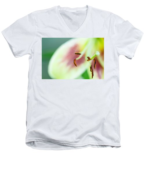Stargazer Lily Men's V-Neck T-Shirt by Marlo Horne
