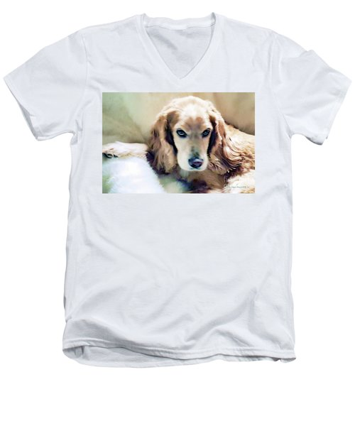 Men's V-Neck T-Shirt featuring the photograph Stevey And His Fur by Polly Peacock