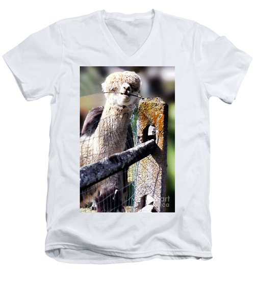 Men's V-Neck T-Shirt featuring the photograph Sticks Taste Good by Polly Peacock