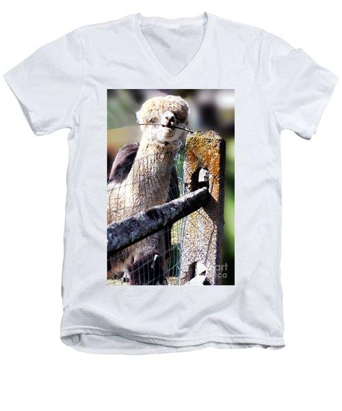 Sticks Taste Good Men's V-Neck T-Shirt