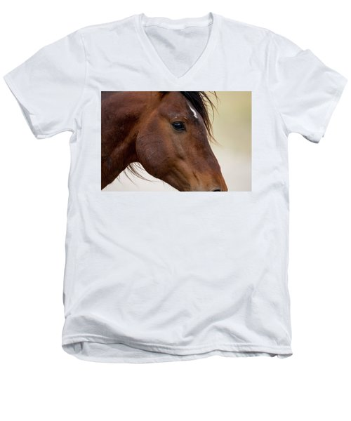 Eye To The Soul Men's V-Neck T-Shirt