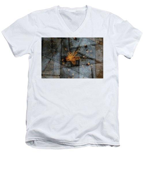 Stone Life Men's V-Neck T-Shirt