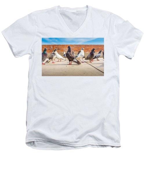 Street Pigeons. Men's V-Neck T-Shirt