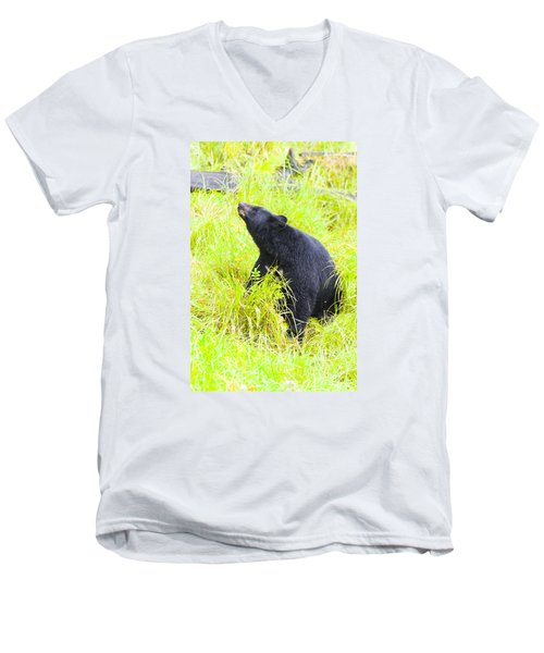 Stretch Men's V-Neck T-Shirt by Harold Piskiel