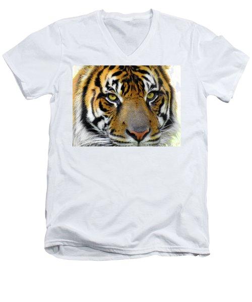 Stripes, No. 26 Men's V-Neck T-Shirt
