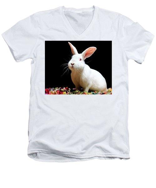 Sully Men's V-Neck T-Shirt