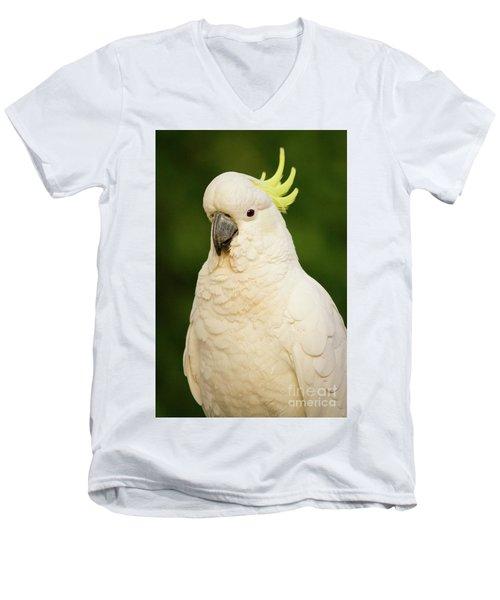 Sulphur Crested Cockatoo Men's V-Neck T-Shirt by Craig Dingle