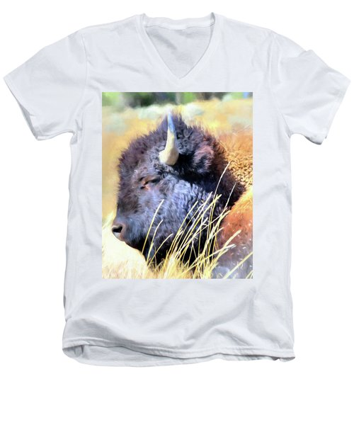 Summer Dozing - Buffalo Men's V-Neck T-Shirt by Greg Sigrist