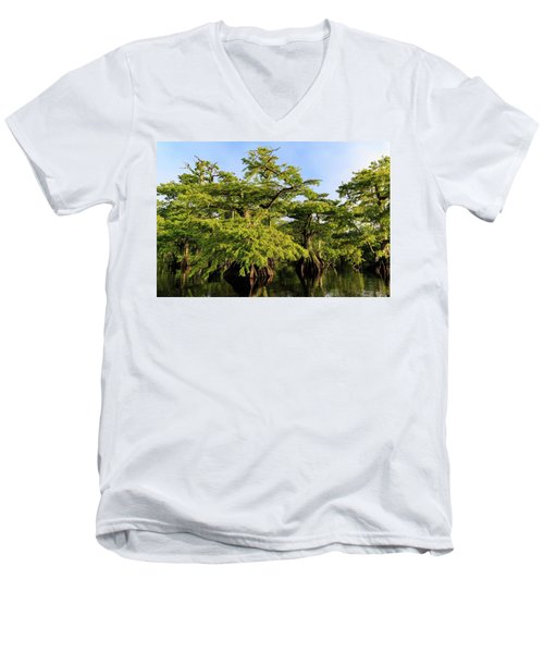 Summer Greens Men's V-Neck T-Shirt