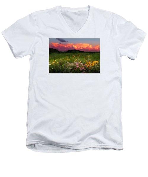 Summer Majesty Men's V-Neck T-Shirt by Rob Blair