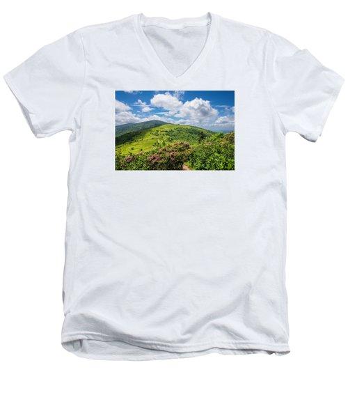 Summer Roan Mountain Bloom Men's V-Neck T-Shirt