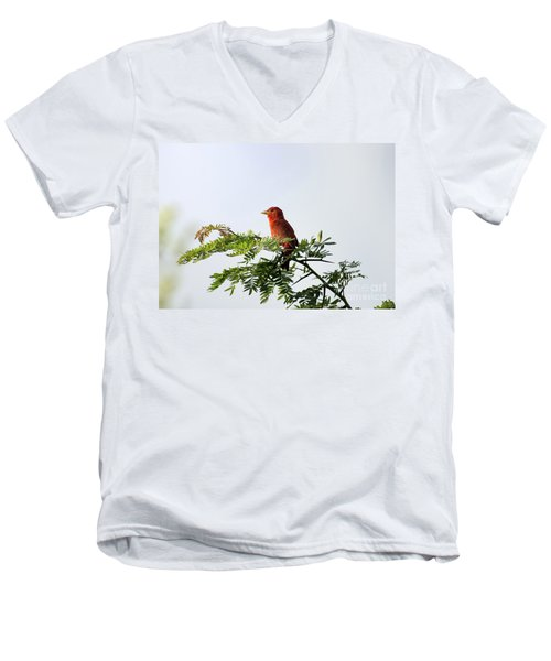 Men's V-Neck T-Shirt featuring the photograph Summer Tanager In Mesquite Scrub by Robert Frederick