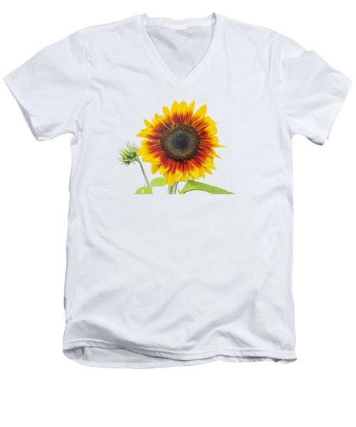 Sunflower 2018-1 Men's V-Neck T-Shirt