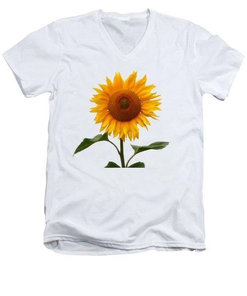 Sunflower On White Men's V-Neck T-Shirt