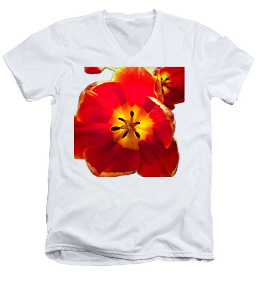 Sunkissed Tulips Men's V-Neck T-Shirt