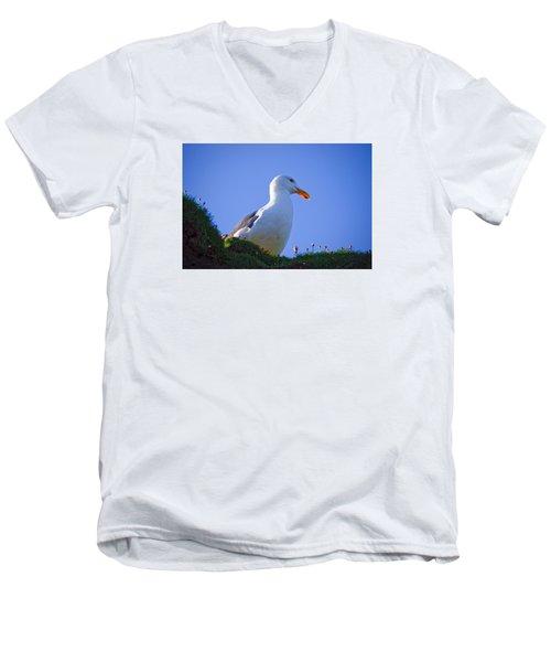 Sunny Perch Men's V-Neck T-Shirt