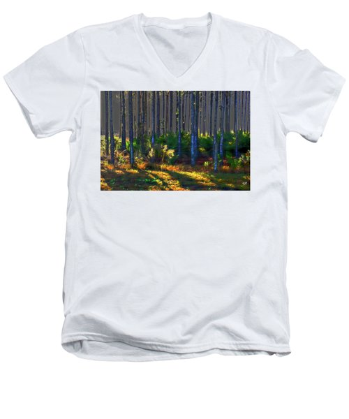 Sunrise On Tree Trunks Men's V-Neck T-Shirt