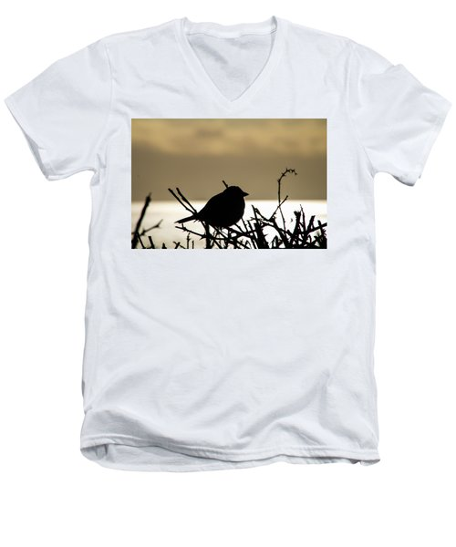 Sunset Bird Silhouette Men's V-Neck T-Shirt