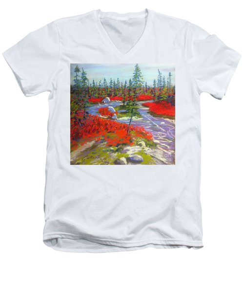 Susie Lake Barrens Men's V-Neck T-Shirt by Rae  Smith